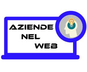 Aziende nel web